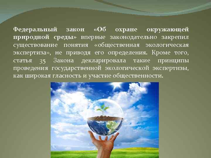 Федеральный закон «Об охране окружающей природной среды» впервые законодательно закрепил существование понятия «общественная экологическая