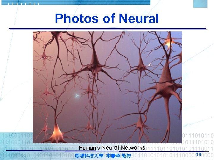 Photos of Neural Human's Neural Networks 朝陽科技大學 李麗華 教授 13