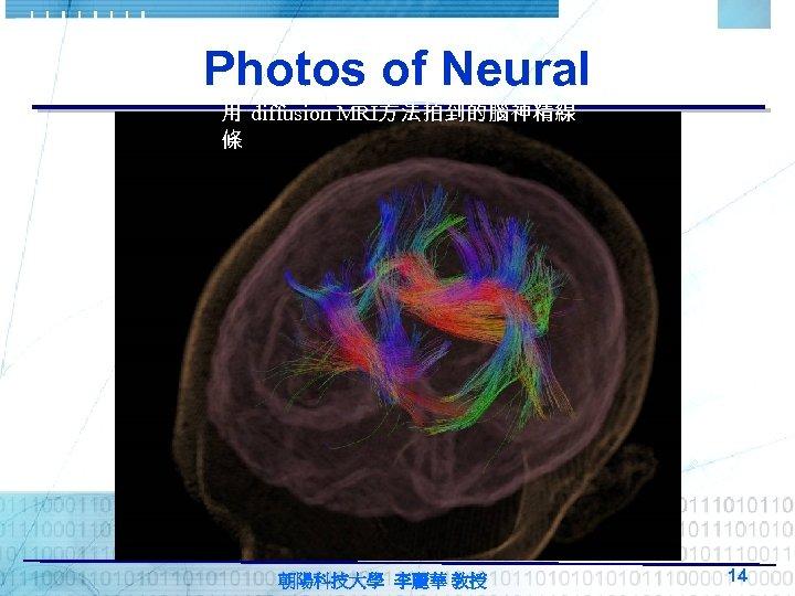 Photos of Neural 用 diffusion MRI方法拍到的腦神精線 條 朝陽科技大學 李麗華 教授 14