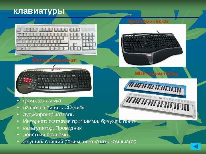 клавиатуры Эргономическая Мультимедийная MIDI-клавиатуры • • громкость звука извлечь/принять CD-диск; аудиопроигрыватель Интернет: почтовая программа,