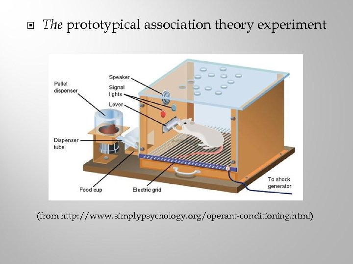 The prototypical association theory experiment (from http: //www. simplypsychology. org/operant-conditioning. html)