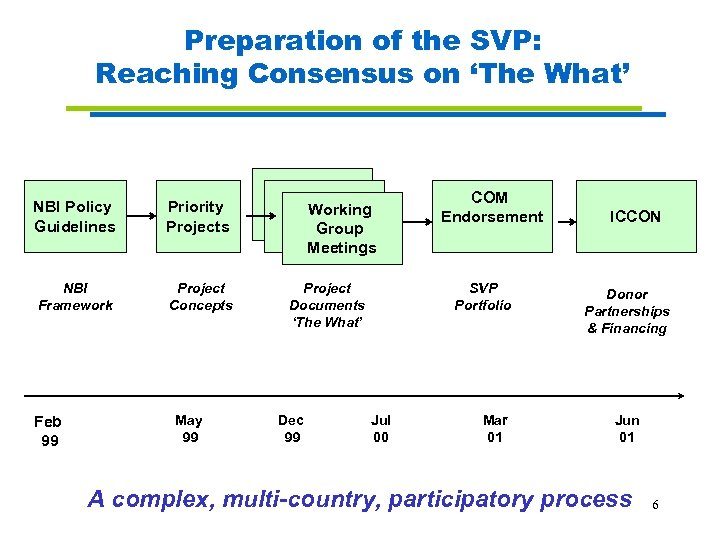 Preparation of the SVP: Reaching Consensus on 'The What' NBI Policy Guidelines Priority Projects