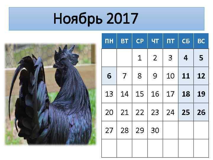 Ноябрь 2017 ПН 7 СР ЧТ ПТ СБ ВС 1 6 ВТ 2 3