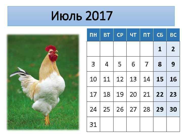 Июль 2017 ПН 4 СР 5 ЧТ 6 ПТ 7 СБ ВС 1 3