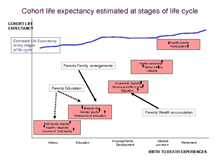 Cohort life expectancy estimated at stages of life cycle COHORT LIFE EXPECTANCY Estimated Life