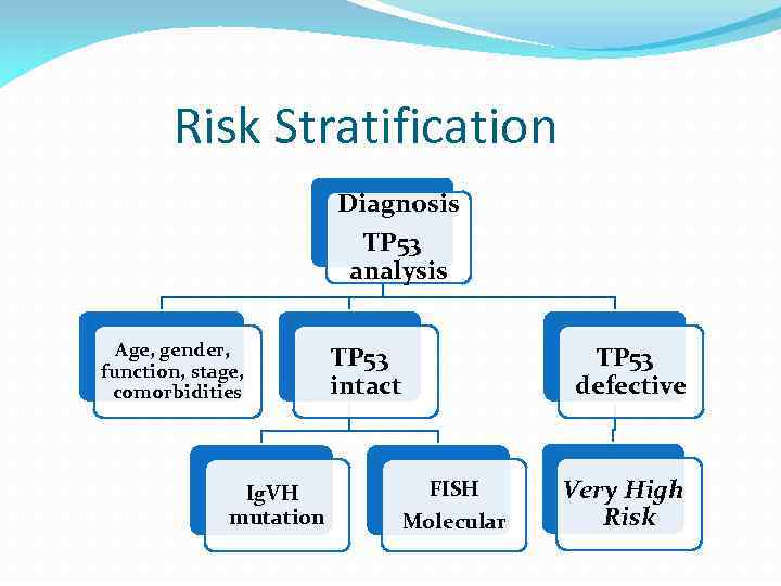 Risk Stratification Diagnosis TP 53 analysis Age, gender, function, stage, comorbidities Ig. VH mutation