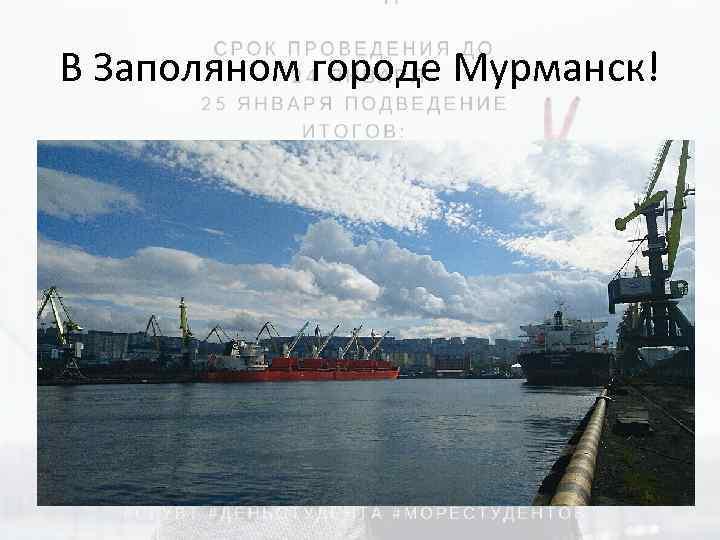 В Заполяном городе Мурманск!