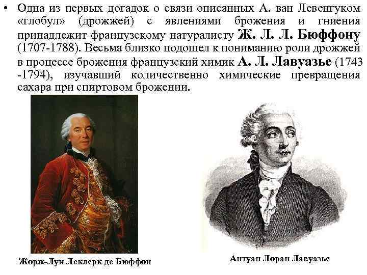 • Одна из первых догадок о связи описанных А. ван Левенгуком «глобул» (дрожжей)