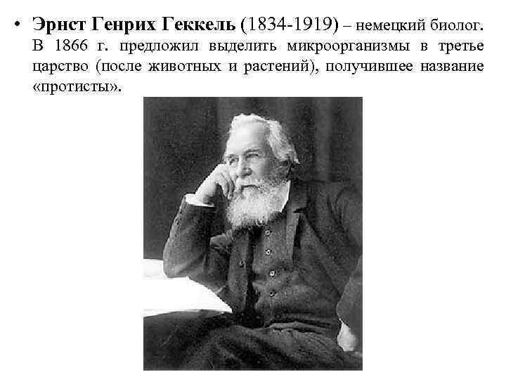 • Эрнст Генрих Геккель (1834 -1919) – немецкий биолог. В 1866 г. предложил
