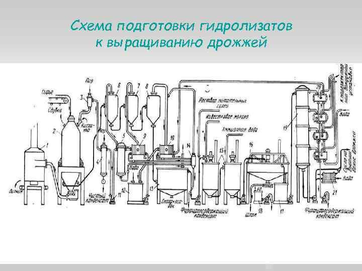 Схема подготовки гидролизатов к выращиванию дрожжей 9