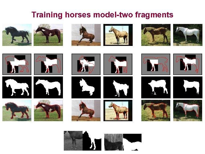 Training horses model-two fragments