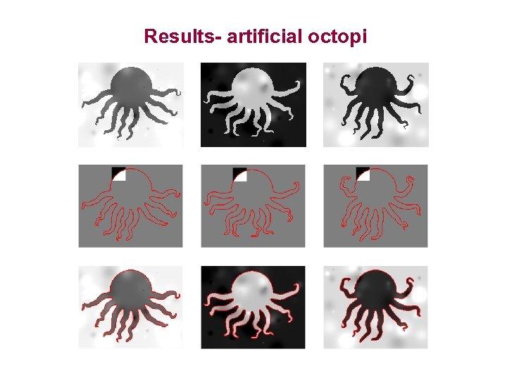 Results- artificial octopi