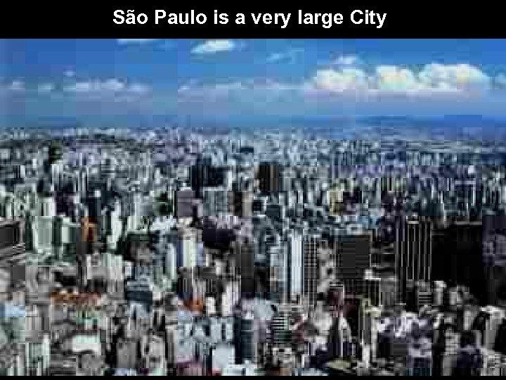. . São Paulo is a very large City