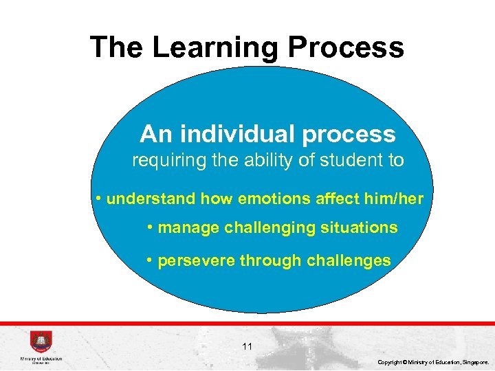 The Learning Process An individual process requiring the ability of student to • understand