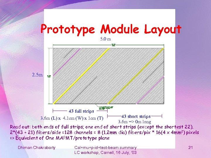 Prototype Module Layout 5. 0 m 2. 5 m 43 full strips 3. 6