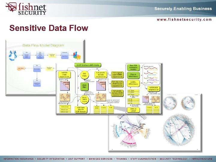 Sensitive Data Flow