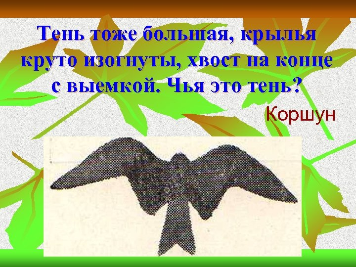 Тень тоже большая, крылья круто изогнуты, хвост на конце с выемкой. Чья это тень?