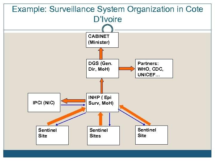 Example: Surveillance System Organization in Cote D'Ivoire CABINET (Minister) DGS (Gen. Dir, Mo. H)