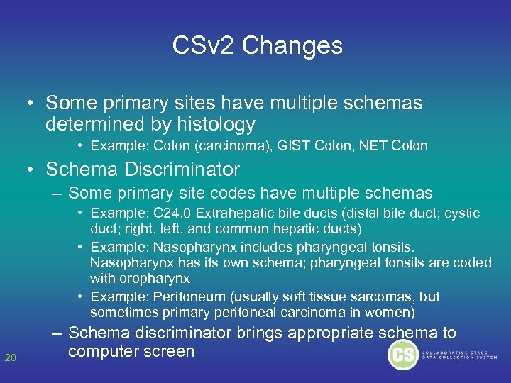 CSv 2 Changes • Some primary sites have multiple schemas determined by histology •