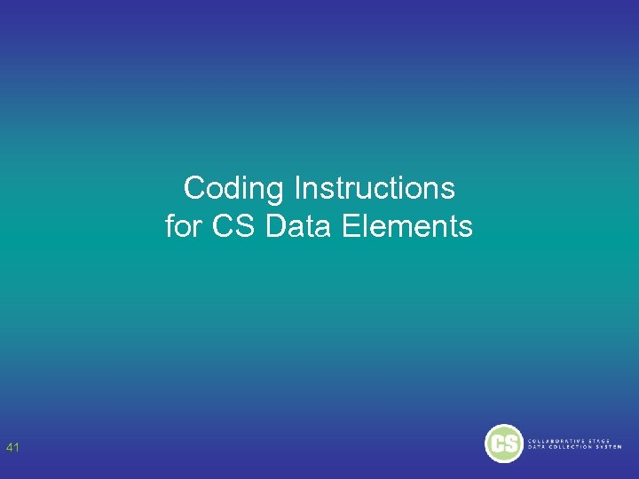 Coding Instructions for CS Data Elements 41