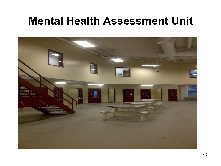 Mental Health Assessment Unit 12
