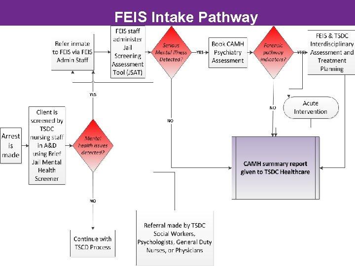 FEIS Intake Pathway