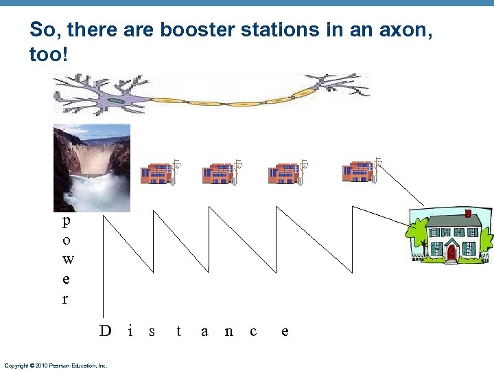 So, there are booster stations in an axon, too! p o w e r