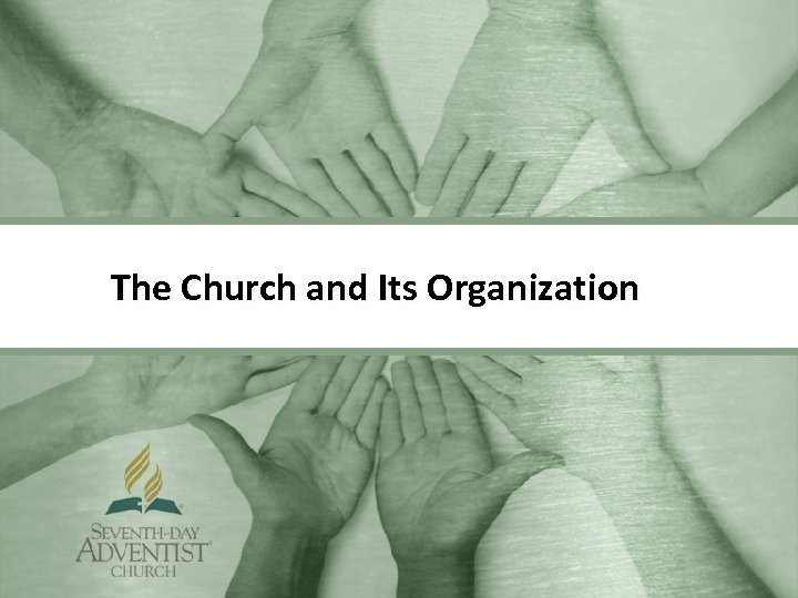 The Church and Its Organization