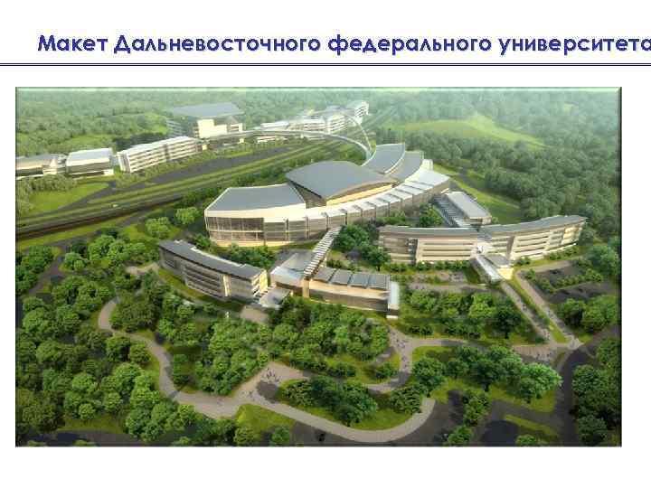 Макет Дальневосточного федерального университета
