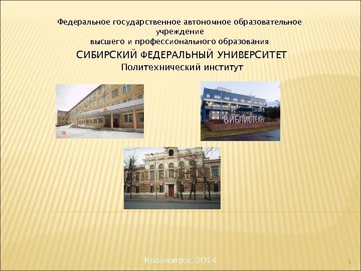Федеральное государственное автономное образовательное учреждение высшего и профессионального образования СИБИРСКИЙ ФЕДЕРАЛЬНЫЙ УНИВЕРСИТЕТ Политехнический институт