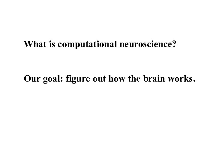 What is computational neuroscience? Our goal: figure out how the brain works.