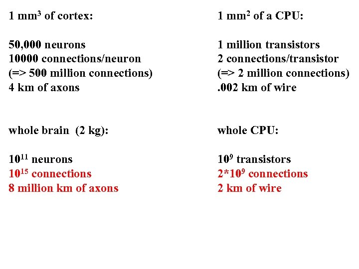 1 mm 3 of cortex: 1 mm 2 of a CPU: 50, 000 neurons