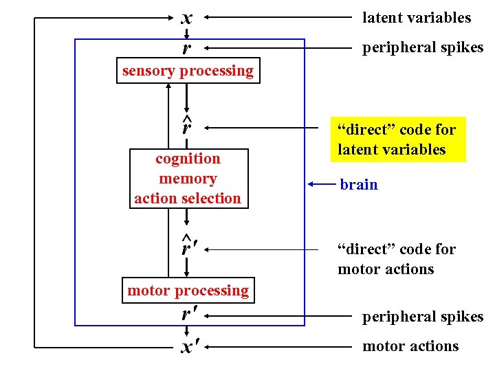 x r latent variables peripheral spikes sensory processing ^ r cognition memory action selection
