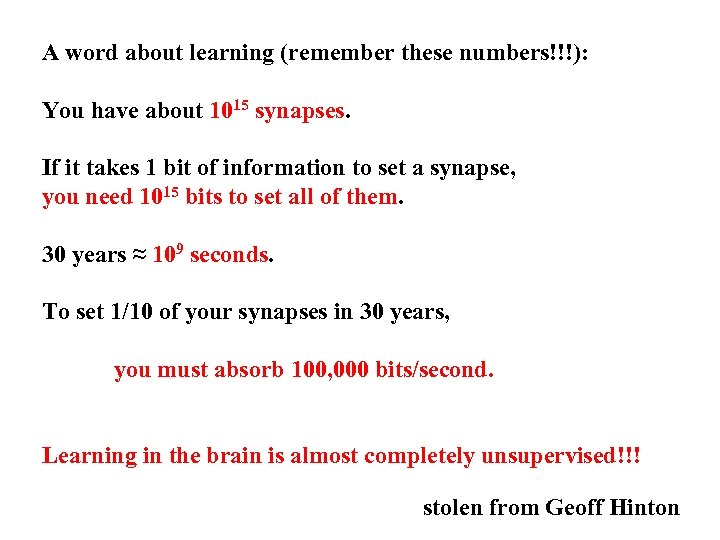 A word about learning (remember these numbers!!!): You have about 1015 synapses. If it