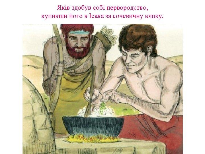 Яків здобув собі первородство, купивши його в Ісава за сочевичну юшку.