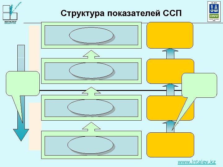 Структура показателей ССП www. intalev. kz