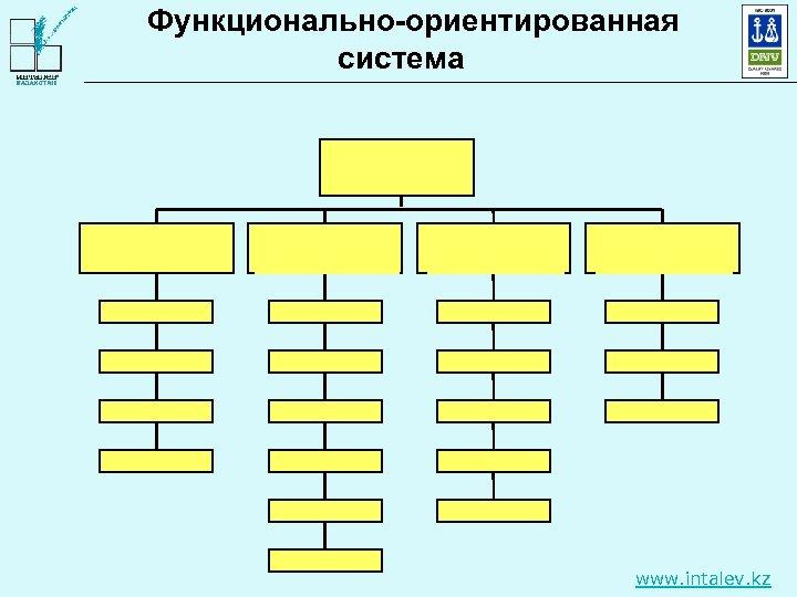 Функционально-ориентированная система www. intalev. kz
