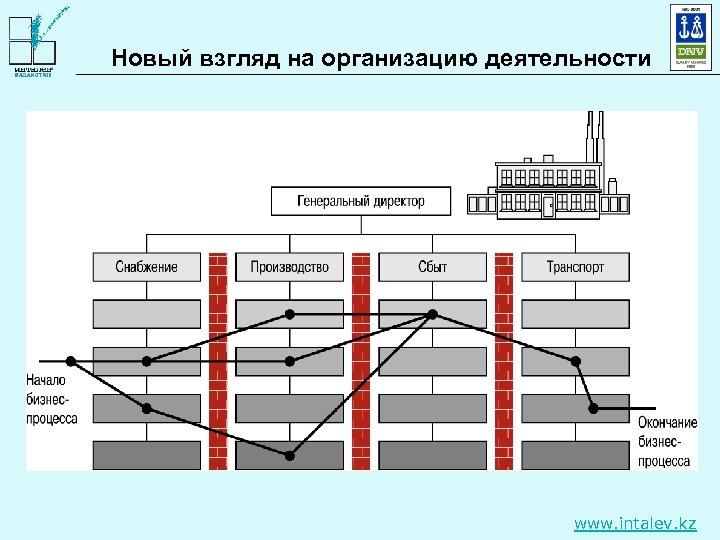 Новый взгляд на организацию деятельности www. intalev. kz
