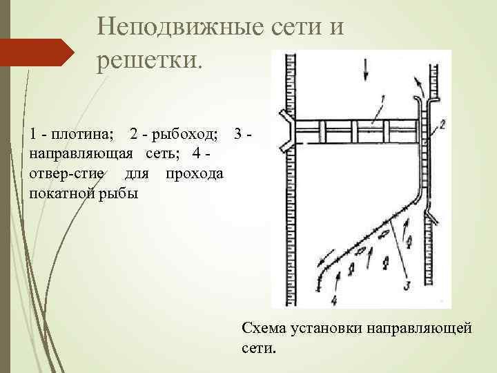 Неподвижные сети и решетки. 1 плотина; 2 рыбоход; 3 направляющая сеть; 4 отвер стие