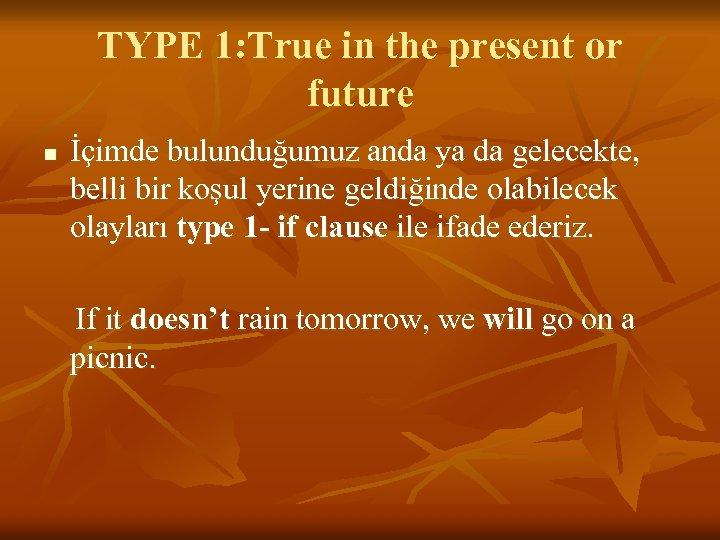 TYPE 1: True in the present or future n İçimde bulunduğumuz anda ya da
