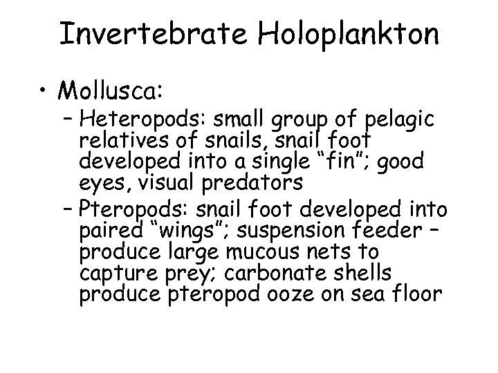 Invertebrate Holoplankton • Mollusca: – Heteropods: small group of pelagic relatives of snails, snail