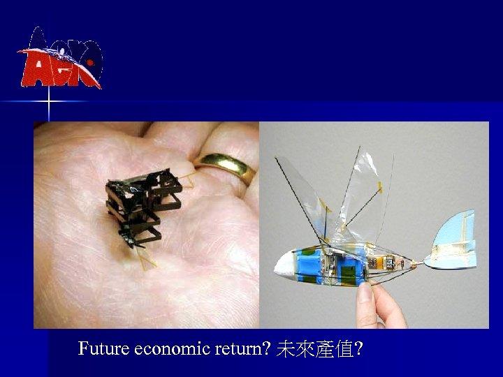 Future economic return? 未來產值?