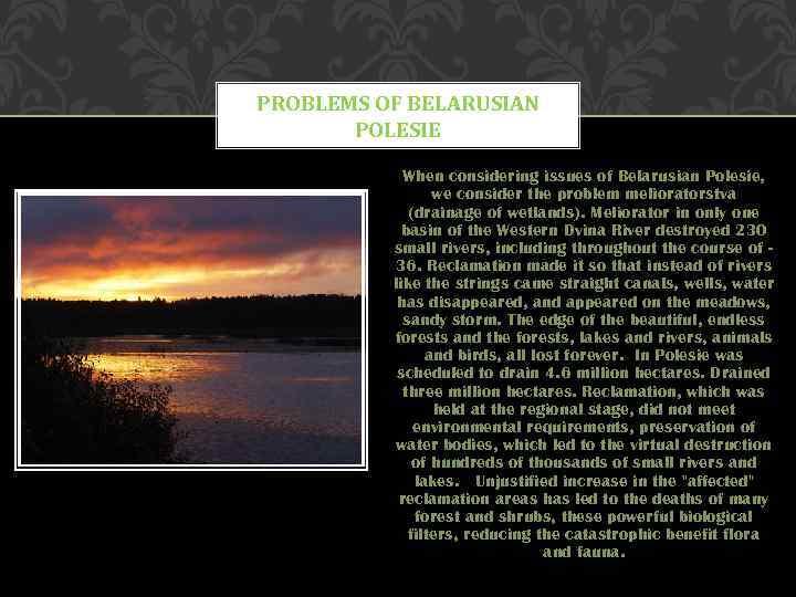PROBLEMS OF BELARUSIAN POLESIE When considering issues of Belarusian Polesie, we consider the problem