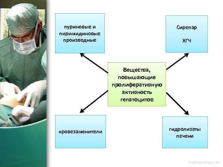 пуриновые и пиримидиновые производные Сирепар ХГЧ Вещества, повышающие пролиферативную активность гепатоцитов кровезаменители гидролизаты печени