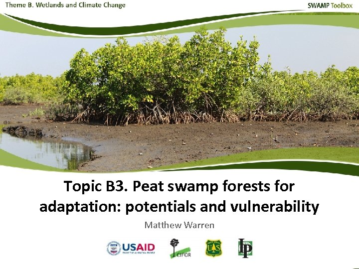 Topic B 3. Peat swamp forests for adaptation: potentials and vulnerability Matthew Warren