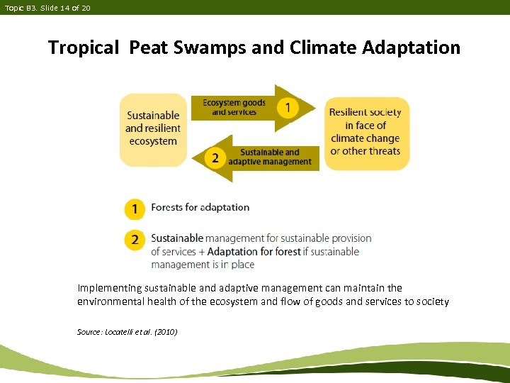 Topic B 3. Slide 14 of 20 Tropical Peat Swamps and Climate Adaptation Implementing