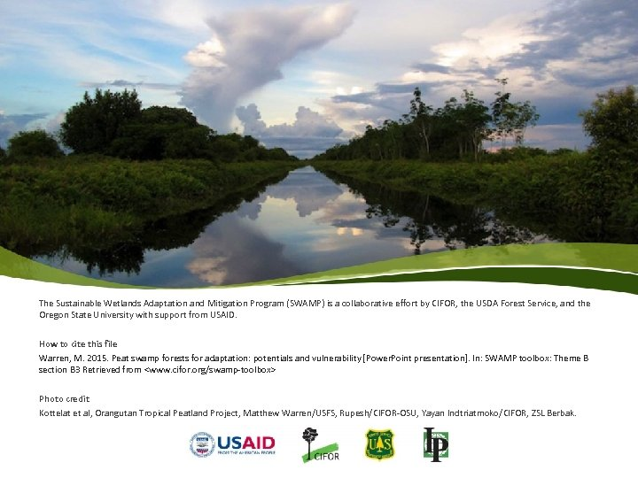 The Sustainable Wetlands Adaptation and Mitigation Program (SWAMP) is a collaborative effort by CIFOR,