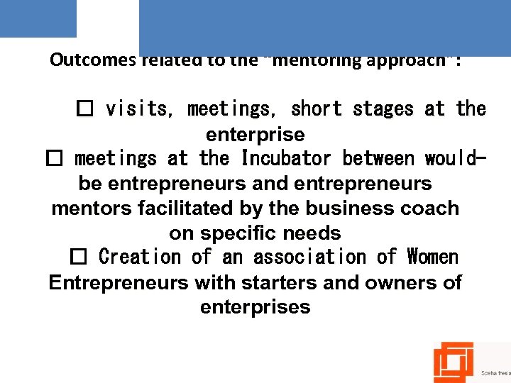 "Outcomes related to the ""mentoring approach"": visits, meetings, short stages at the enterprise meetings"