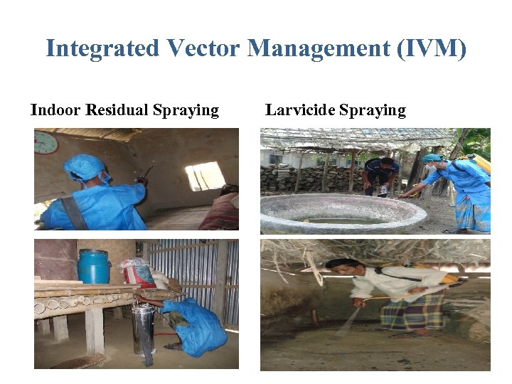 Integrated Vector Management (IVM) Indoor Residual Spraying Larvicide Spraying