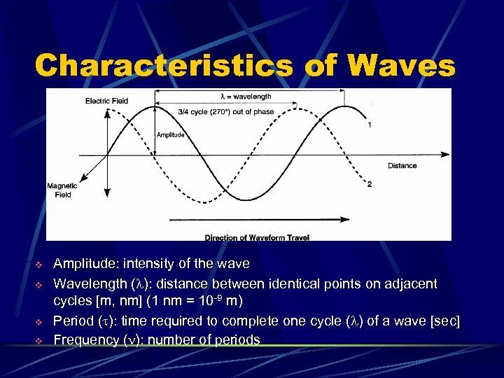 Characteristics of Waves v v Amplitude: intensity of the wave Wavelength (l): distance between